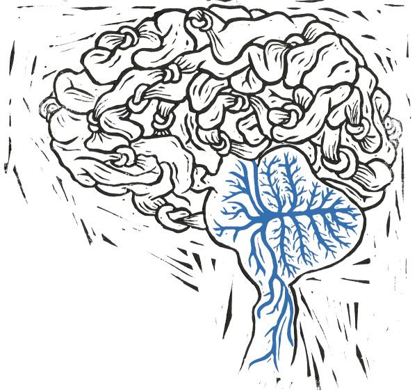 malvinadelesalle_brain