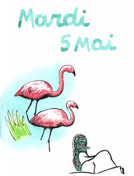 malvinadelesalle_miami_5